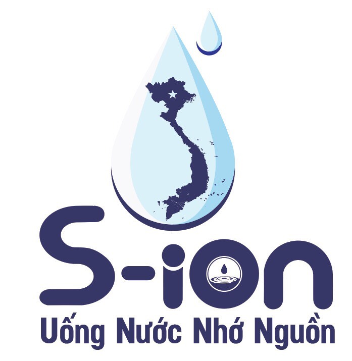 S-ION GROUP